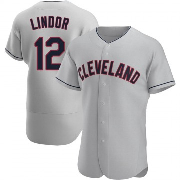 Authentic Francisco Lindor Men's Cleveland Indians Gray Road Jersey